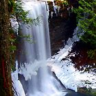 Flowing Water - Ammonite Falls by Bob Webb