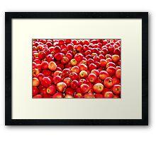 It's Flu  Season!  Eat an Apple a Day, Keeps the Doctor Away Framed Print