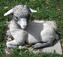 Ba Ba Lawn Sheep ..Garden Ornament by judygal