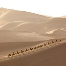 Dunhuang, Gansu, China by Christopher Herwig