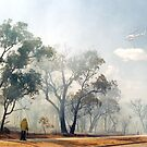 Fire, Perth, Western Australia by Margaret  Hyde