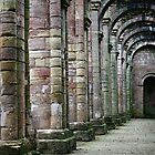 Arches at Fountains Abbey by TheWalkerTouch