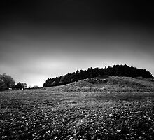 No Hill is an Island BW by Andy Freer