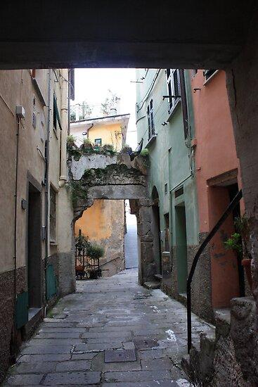 Carrugio in Riomaggiore by annalisa bianchetti