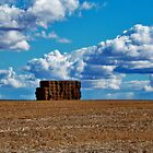 Haystack near Freeling - South Australia by Lucia Baldini