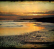 Gulfport Low Tide by Jonicool