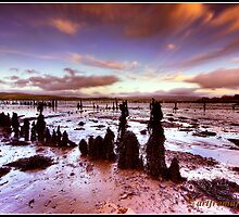 Timber Ponds River Clyde Estuary by akirby77