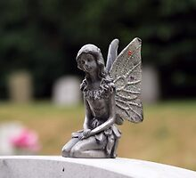 Angel by davesphotographics