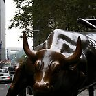 Bull by the Horns by Tracy Persson