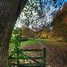 Through The Gate by Paul Thompson Photography