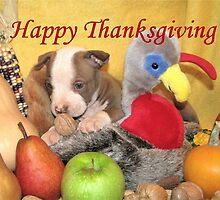 Thanksgiving by Ginny York