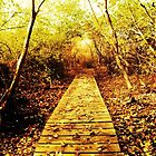 I See A Winding Path. by Elemental523