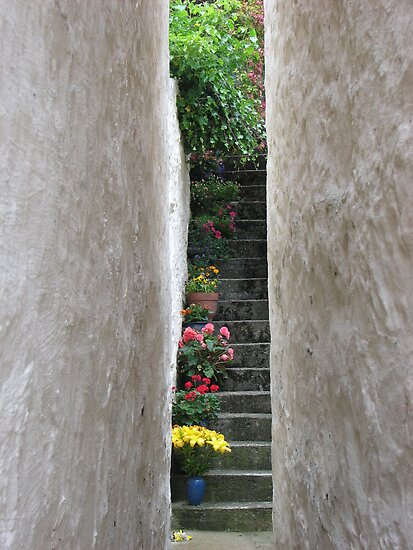 Flowered stair, Scotland by Patricia Bier