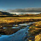 Iceland - Thagill by Patrycja Makowska
