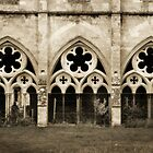 Salisbury Cathedral cloisters, Wiltshire by Peter Vines