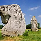 Neolithic Avebury stone circle, Wiltshire by Peter Vines