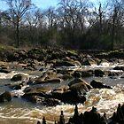 Rocky Stream by JGetsinger