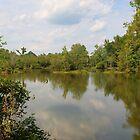 Summer Pond by JGetsinger