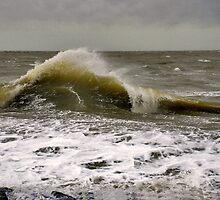 Wave by Adri  Padmos
