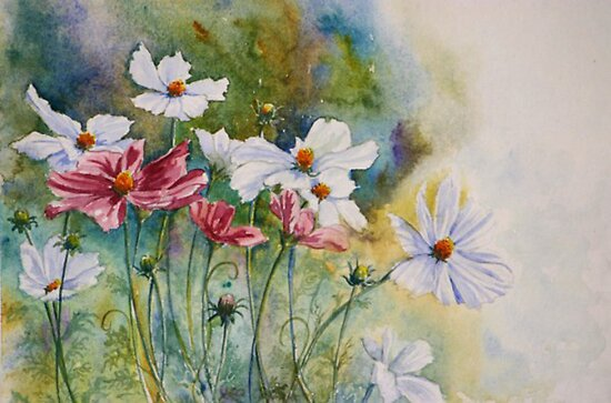Charm of Cosmos by Debbie Schiff