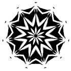 Black on White Kaleidoscope by Jan  Tribe