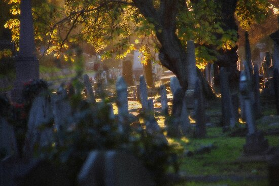 Kensal Green Cemetery in Autumn. by Dave Hare
