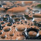 Drip... Drop... by Reza G Hassani