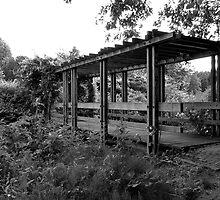 Wooden bridge to the rose garden by steppeland