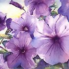 Purple Profusion! by Patricia Henderson