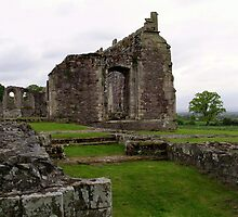Haughmond Abbey view 5 by Lawson Clout