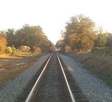 railroad traveling by ebrewton