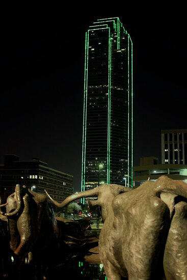Cattle Drive in Downtown Dallas by Susan Russell