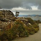 Mt William Grampians  by Joe Mortelliti