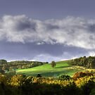 Early Autumn Hillside View by Gene Walls