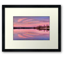 Pink Wings Framed Print