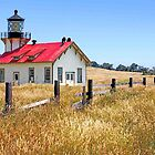 """Point Cabrillo Lighthouse"" - ""One if by sea"" by William Moore"
