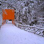Gates Project Walkway by peterrobinsonjr