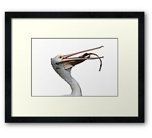 Great Catch! Framed Print