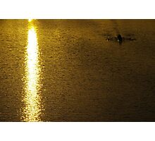 On Golden Pond, You Must Row Towards The Light Photographic Print