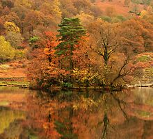 Rydal Reflections - Lake District by Rachel Slater
