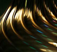 Goldrush by Anne Kingston