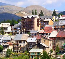 Beuil picturesque village by daffodil