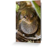Single Brown Male Greeting Card