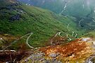 Vadheim to Sande Road, Norway  by Margaret  Hyde