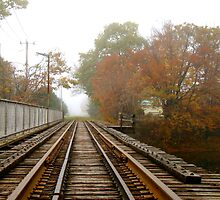 Autumn By The Tracks by marchello
