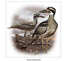 BEACH THICK-KNEE #1 by DilettantO