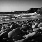 the wild coast by Elie Le Goc