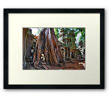 Angkor Wat, Ta Prohm Framed Print