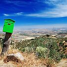 Green letterbox by Irina-C
