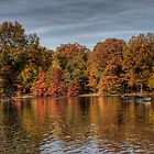 Fall in Central Park by Lauren Banks